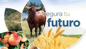 Cooperatives Agro alimentàries y ASAJA Alicante muestran ...