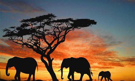 Cosas que no sabías sobre Kenia: ¡Aprende algo nuevo ...