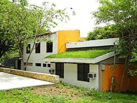 Crean techos verdes que disminuyen temperatura de las ...