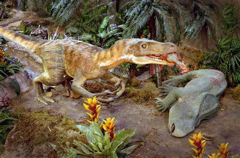 Criptosito   velociraptor