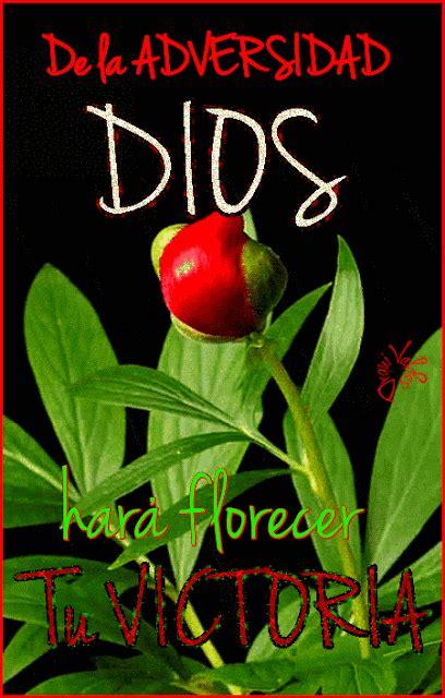 Cristo te AMA: | Gif de hola, Gifts de buenos dias ...