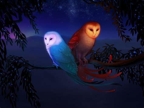 Cuaderno Nocturno: febrero 2013
