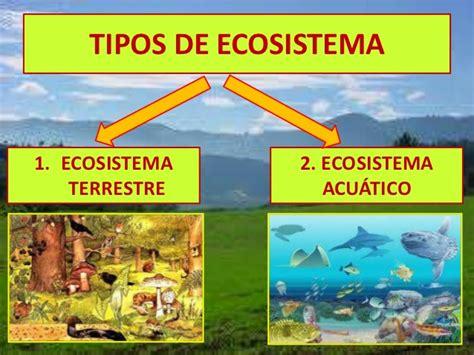 Cuadros comparativos entre ecosistemas terrestres y ...