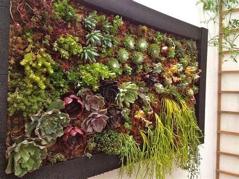cuadros vegetales   Vertical succulent gardens, Succulents ...