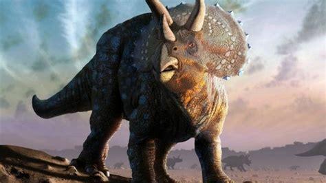 ¿Cuál es el verdadero origen  inesperado  de los dinosaurios?