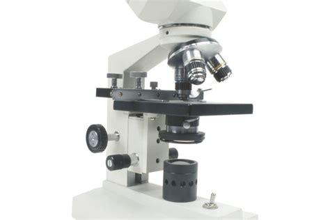 ¿Cuál es la resolución de un microscopio? | Muy Fitness