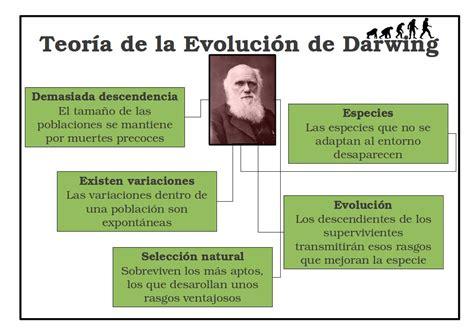 ¿Cual es la teoria de la evolucion? ️ » Respuestas.tips