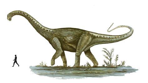 ¿Cuál fue el dinosaurio más GRANDE del mundo?