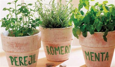 ¿Cuales son las hierbas aromáticas más utilizadas en la ...