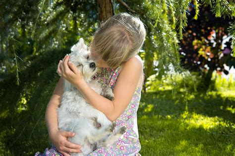 ¿Cuáles son las mejores mascotas para niños?