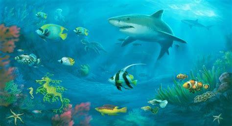 ¿Cuántas especies de vida marina existen?   Audio   ¡Ya ...