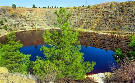 ¿Cuántos ecosistemas hay en el mundo? | Clases de ecosistemas