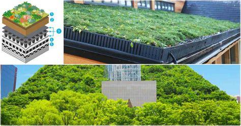 Cubierta ajardinada, techos verdes y tejados vegetales eco