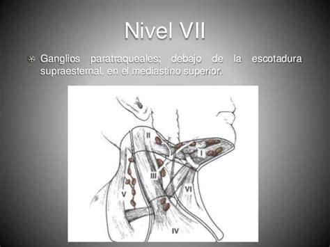 Cuello patrones de ganglios linfaticos