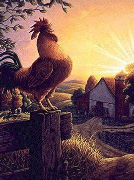 Cuentos del mundo: ¿Por qué los gallos sólo cantan de día?
