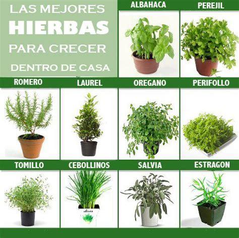 Cultivar el Huerto Casero.: Hierbas para cultivar dentro ...