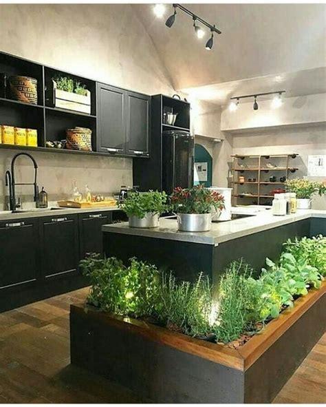 Cultivar plantas aromáticas en nuestra cocina   Osyley.com