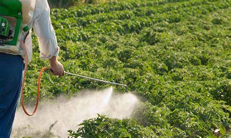 Cultivos Tolerantes a Herbicidas – Agriculturers.com | Red ...