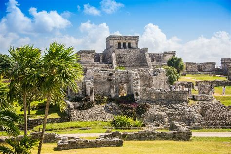 Cultura maya: historia, características, organización ...