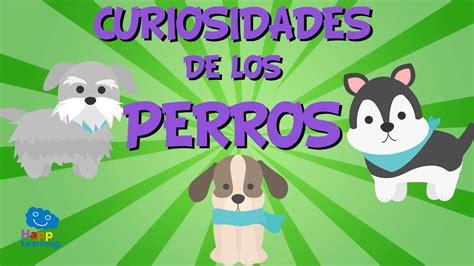 Curiosidades de los Perros | Videos Educativos para Niños ...