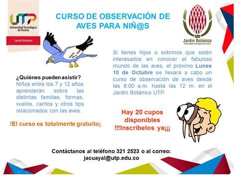 Curso de observación de aves para niños