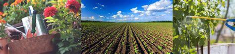 Curso online cultivo de plantas y tepes en vivero online