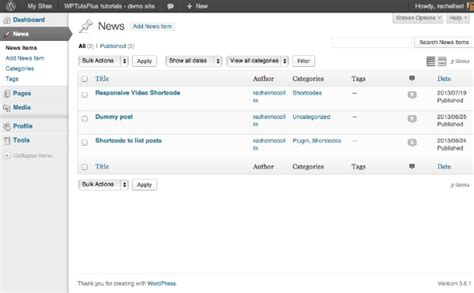 Customizing the WordPress Admin: Custom Admin Menus