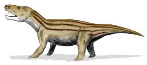 Cynodontia   Wikipedia, la enciclopedia libre