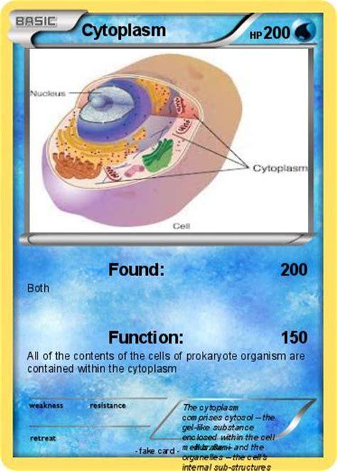 CYTOPLASM: on emaze