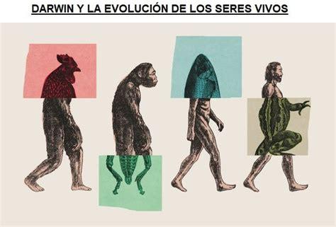 Darwin y la Evolución de los Seres Vivos   AreaCiencias
