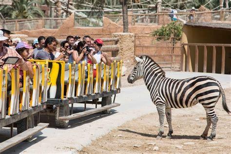 Day Trip to Rio Safari Elche from Benidorm in Alicante ...