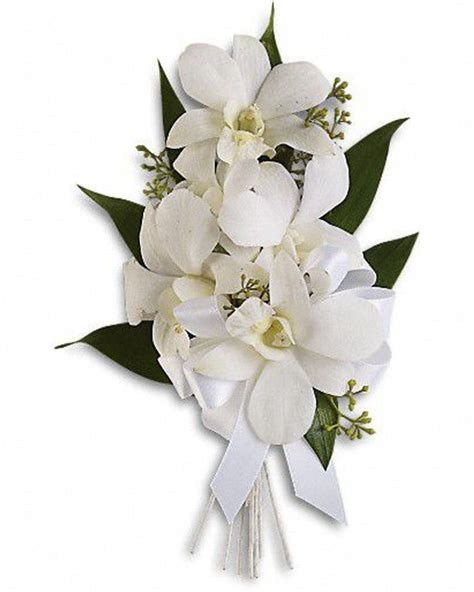 Dazzling Dendros   Florist / Flowers Delivered   Allen s ...