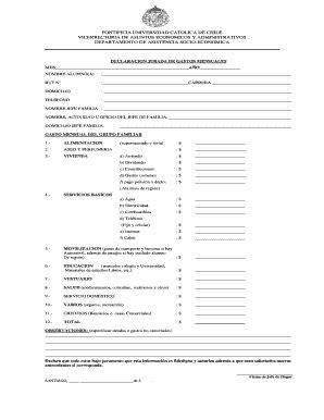 Declaracion Jurada De Gastos Mensuales   Fill Online ...