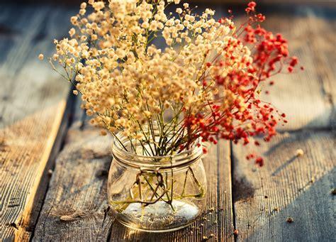 Decoración con flores secas naturales | Revista TendenciaDeco