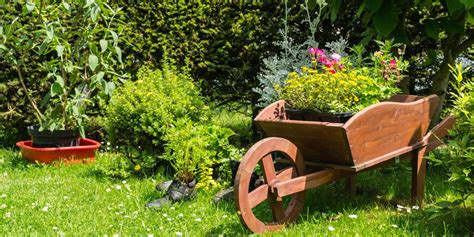 Decoración de jardines exteriores   Mundo Jardín