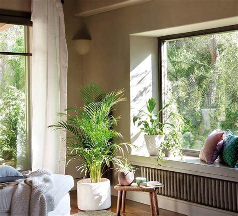 Decorar con plantas y macetas recicladas +90 ideas con plantas