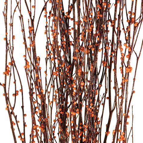 Decorative Branches | Bittersweet Birch Branches