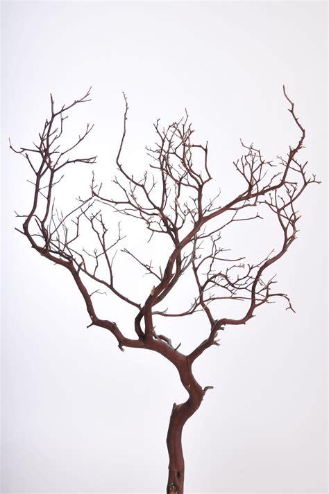 Decorative Branches | Manzanita branches, Branch decor ...