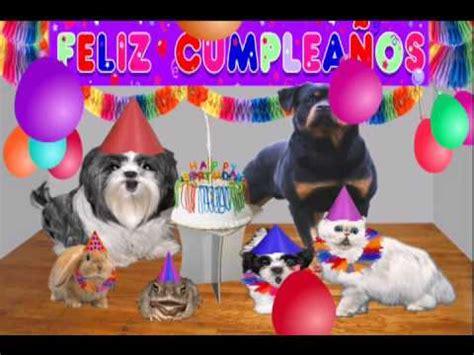 Dedicatoria de cumpleaños, Video chistoso, video gracioso ...
