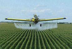 Definición de agricultura intensiva   Qué es, Significado ...
