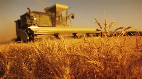 Definición de Agricultura   Qué es y Concepto