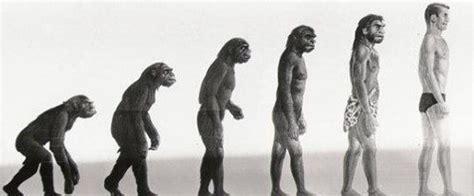Definición de Evolución » Concepto en Definición ABC