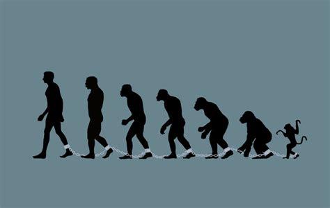 Definición de Evolución, Qué es, su Significado y Concepto
