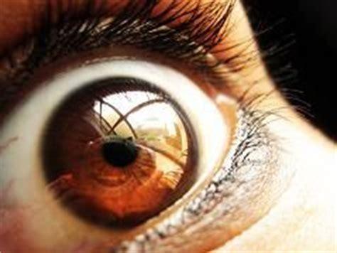 Definición de paranoia   Qué es, Significado y Concepto