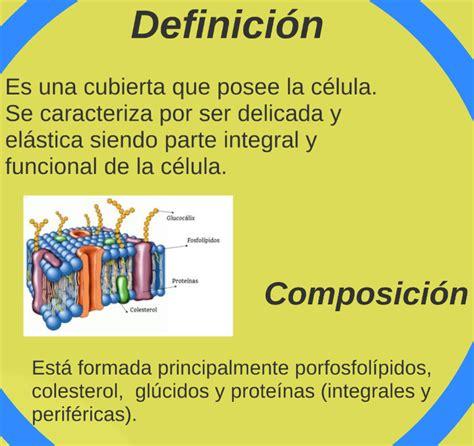 DEFINICIÓN Y COMPOSICIÓN DE LA MEMBRANA PLASMATICA ...