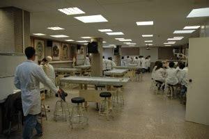 Departamento de Morfología y Biología Celular ...