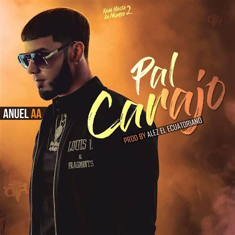 Descargar: Anuel AA   Pal Carajo | ElCallejonMusical.Com