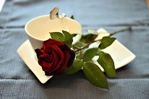 Descargar saludos romanticos de buenos dias   Textos de ...