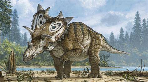 Descubierta una nueva especie de dinosaurio con cuernos y púas