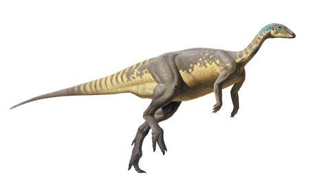 Descubierta una nueva especie de dinosaurio ibérico del ...